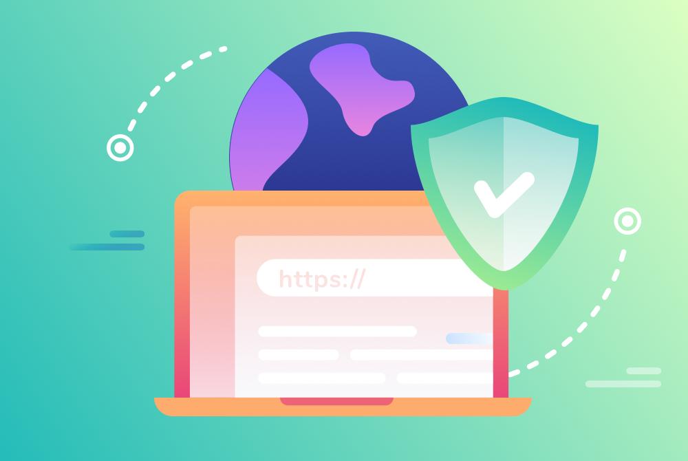 Cayman Islands Website Designer